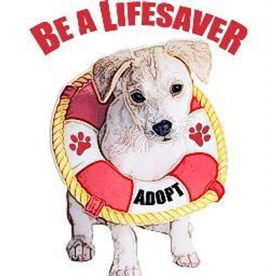 MarrVelous Pet Rescues & Adoptions (Key Largo, Florida) logo of dog with lifesaver with paws and adopt, be a lifesaver