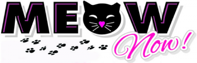 "MEOW Now (St. Petersburg, Florida) logo is the org name with a black cat face with a pink heart nose for the ""O"" and pawprints"