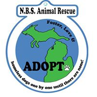 "NBS Animal Rescue (Madison Heights, Michigan) logo is a world with land shaped like a dog and ""Foster, Love & Adopt"" on it"