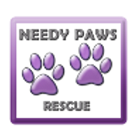 Needy Paws Rescue (St. Louis, Missouri) logo is the organization name and two purple paw prints inside a purple square