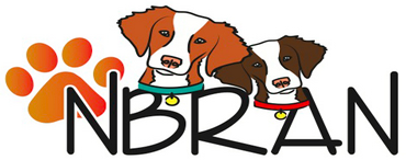 National Brittany Rescue and Adoption Network (Greensburg, Pennsylvania) logo of green square, white dog silhouette, NBRAN