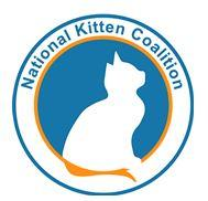 The National Kitten Coalition (Gainesville, Virginia) | logo of blue circle, white cat, orange tail, National Kitten Coalition