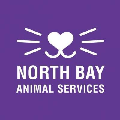 North Bay Animal Services (Petaluma, California) logo animal face and whiskers in square