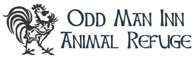 Odd Man Inn Animal Refuge