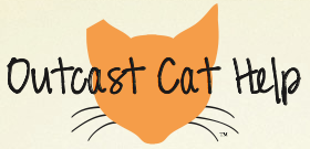 Outcast Cat Help (Martinez, California) of orange cat head, white whiskers, humanly controlling the cat population
