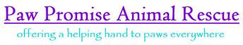 "Paw Promise Animal Rescue (Sun City, Arizona) logo is the org name with the ""offering a helping hand to pets everywhere"" tagline"
