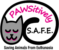 Pawsitively Saving Animals From Euthanasia (Brentwood, California)
