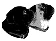 Pug Nation Rescue of Los Angeles (Torrance, California) logo is two pug heads, one black and one black and tan, looking up