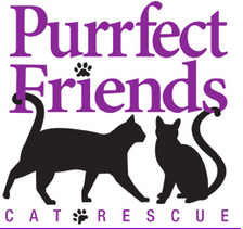 Purrfect Friends Cat Rescue (Cincinnati, Ohio) logo is two black cats and the organization name in purple with black pawprints