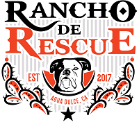 Rancho de Rescue (Auga Dulce, California) logo is the org details with a black & white dog head, cacti partial border, and star