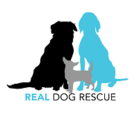 Real Dog Rescue, Inc.