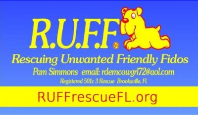 Rescuing Unwanted Friendly Fidos (Brooksville, Florida) logo dog in square