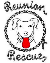 Reunion Rescue (Austin, Texas) logo is a dog face with a red tongue with a rope outline and the org name in rope letters