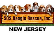 SOS Beagle Rescue (Atco, New Jersey) logo is eight beagles looking over a banner with the organization name on it