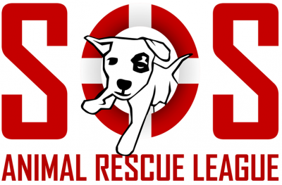 Save One Soul Animal Rescue League | Best Friends Animal Society