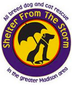 Shelter from the Storm Animal Rescue
