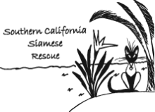 Southern California Siamese Rescue (Agoura Hills, California) | logo of Siamese cat, plants, Southern California Siamese Rescue