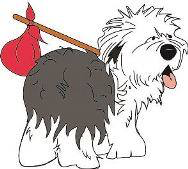 Southern California Old English Sheepdog Rescue