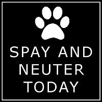 Spay and Neuter Today (Kill Devil Hills, North Carolina) logo is a pawprint and the org name in white on a black background