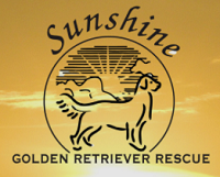 Sunshine Golden Retriever Rescue
