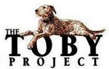 Toby Project
