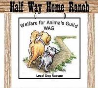 Welfare for Animals Guild