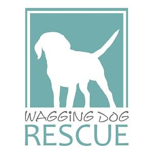 Wagging Dog Rescue NKLA (Carlsbad, California) | logo of white dog, green square, text waggin dog rescue