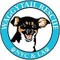 Waggytail Rescue (NKLA)