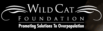 Wild Cat Foundation Inc.