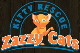 Zazzy Cats Kitty Rescue logo