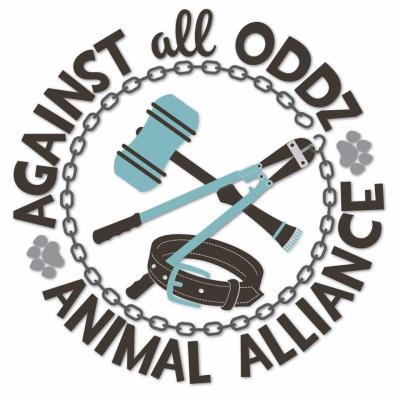 Against All Oddz Animal Alliance (Buffalo, New York) logo with gavel and dog collar in circle