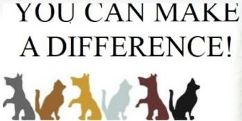 youcanmakeadifference, Inc. (Gretna, Florida) logo dogs and cats