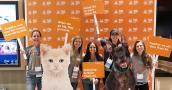 Group of Best Friends National Conference attendees holding signs in front of a backdrop next to a kitten cutout