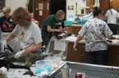 Clinic performing high-volume spay and neuter surgeries in California