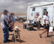 Spay/neuter event on Navajo Nation is big success