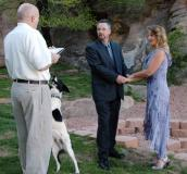 Wedding goes to the dogs
