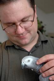 David Dickson and his African gray parrot foster bird