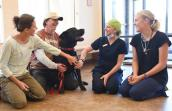 Hatch the dog who had a perforated intestine at the Best Friends clinic