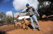 Hummer the Hurricane Katrina dog survivor with caregiver