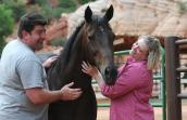 Volunteer Megan and Matt Claflin enjoy time with Lady the horse at Best Friends Animal Sanctuary