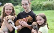 Adele's puppies with volunteers