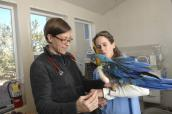 Dr. Margaret and Dr. Patti with a parrot