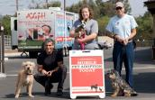 Volunteers with dogs at a mobile adoption event in Los Angeles