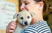 Volunteer Kerry Armstrong holding a puppy