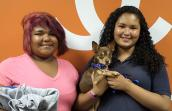 Chihuahua named Reece, who was the 4,000th adoption from Best Friends Pet Adoption and Spay/Neuter Center in Mission Hills