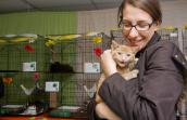 Kitten Nursery party at Salt Lake County Animal Services, with woman snuggling a kitten