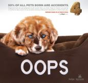 "Fix at Four spay neuter campaign poster that says ""Oops"" with a puppy lying in a bed"