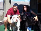 Pitbull dog with his new family