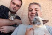 Two kittens with FIV are adopted by couple