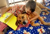 Little boy reading to a dog pauses to hug the dog